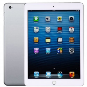 Silver Apple iPad Air For Rent