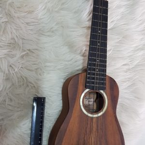 Alegre 21″ Acoustic Ukulele for Rent