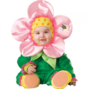 Baby Blossom Large For Rent
