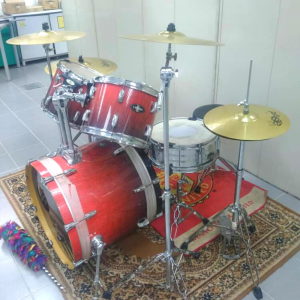 Drum Pearl For Rent