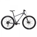 GIANT MOUNTAIN BICYCLE (L) SHIMANO ALIVIO For Rent